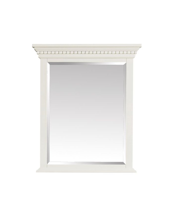 Hastings FW 28 in. Mirror
